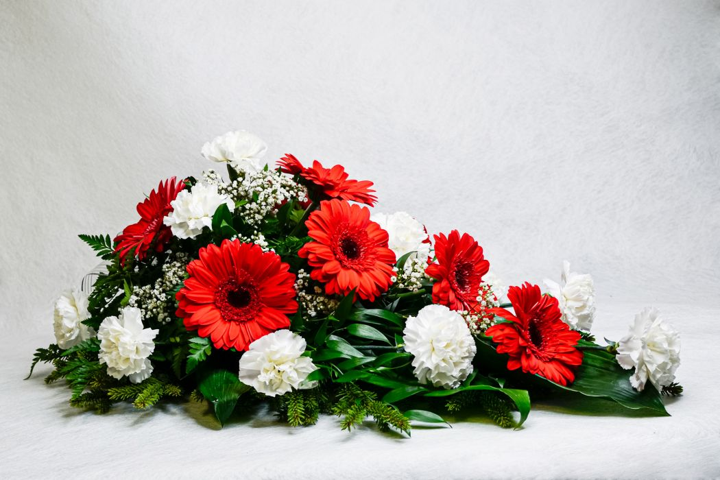 36. Kukkalaite punainen gerbera, harso ja valkoinen neilikka