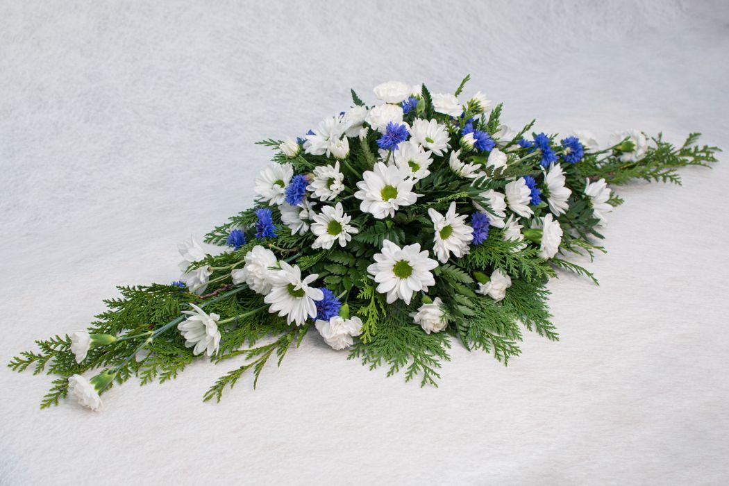 03. Arkunkansilaite valkoinen ja sininen ruiskukka